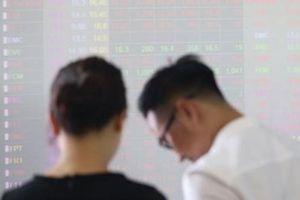 Chứng khoán Việt từng chao đảo thế nào khi xuất hiện thông tin bắt đại gia?