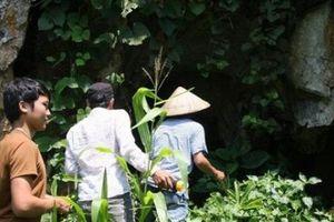 Vừa kể vừa run: Hang đá khổng lồ, nơi ẩn mình của bầy trăn ở Sơn La