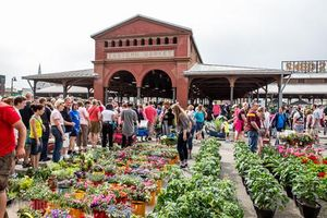 Khám phá 5 khu chợ nông sản lâu đời nhất thế giới