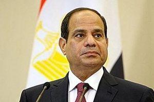 Tổng thống Ai Cập gặp Tướng Libya ở Cairo