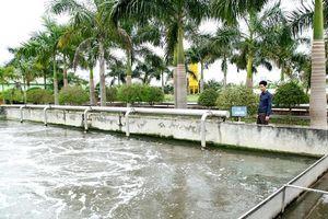Phát triển bền vững không còn là 'món trang sức xa xỉ' với doanh nghiệp Việt