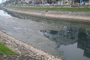 Sông Tô Lịch có cơ hội hồi sinh