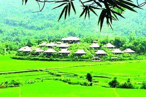 Phát triển du lịch xanh: Nhu cầu bức thiết