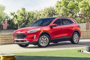 Chi tiết Ford Escape 2020 - đối thủ của Honda CR-V và Mazda CX-5