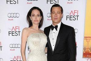 Angelina Jolie và Brad Pitt kết thúc quan hệ vợ chồng, xác nhận độc thân