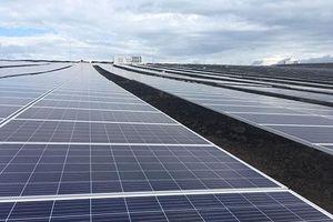 Bình Thuận: Nhà máy điện mặt trời Hàm Phú 2 hòa lưới điện quốc gia