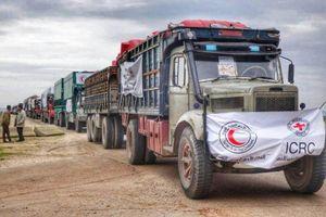 Ủy ban Chữ thập đỏ quốc tế tìm kiếm 3 nhân viên bị IS bắt cóc gần 6 năm ở Syria