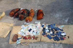 Cả trăm đối tượng sát phạt trên chiếu bạc ven biên giới ở Tây Ninh