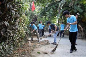 Thừa thiên Huế: Phó Chủ tịch tỉnh tham gia trồng hoa hưởng ứng 'Ngày Chủ nhật xanh'