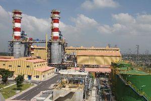 Điện lực Dầu khí Nhơn Trạch 2 phấn đấu chia cổ tức tỷ lệ 25% năm 2019