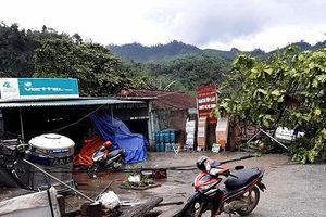 Mưa to kèm gió lốc gây nhiều thiệt hại tại Tuyên Quang