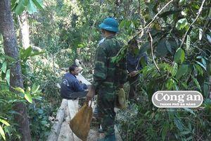 Vụ phá rừng ở Ea Kar (Đắk Lắk): Phát hiện thêm hơn 40m3 gỗ bị đốn hạ trái phép