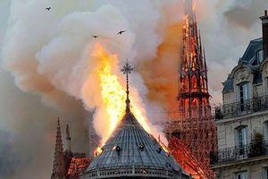 Vụ cháy Nhà thờ Đức Bà Paris: Sao Việt đau xót, cầu nguyện
