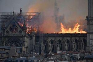 Cháy Nhà thờ Đức Bà Paris: Sao Hollywood bàng hoàng tiếc nuối