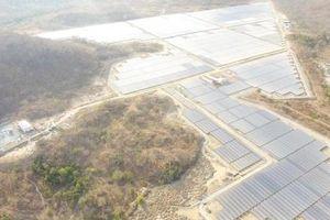 Nhà máy điện mặt trời thứ 2 ở Bình Thuận hòa lưới điện Quốc gia