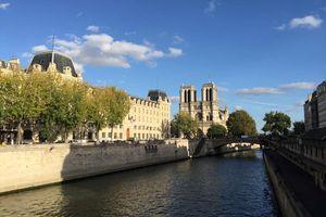 Cháy Nhà thờ Đức Bà Paris: Bàng hoàng từ những người Việt từng đến nơi này