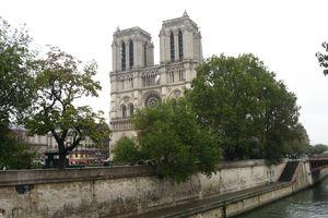 Người Việt từng đến Nhà Thờ Đức Bà Paris: Bàng hoàng và cầu mong