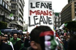 Thị trưởng, thẩm phán Algeria tẩy chay bầu cử