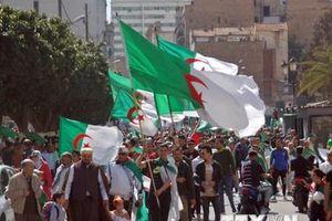 Bầu cử Tổng thống Algeria: Nhiều ứng cử viên nộp hồ sơ đăng ký