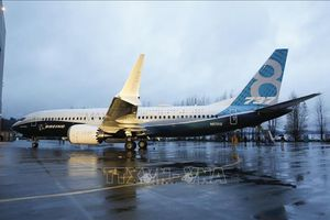 Các hãng hàng không Mỹ đối mặt với tình trạng thiếu máy bay sau sự cố Boeing 737 MAX
