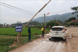 Huyện Quỳnh Lưu (Nghệ An) công bố hết dịch tả lợn châu Phi