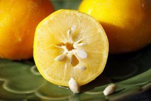 Những lợi ích không ngờ đến của hạt cam