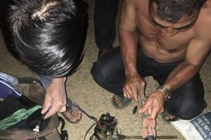 Cả thôn phục kích vây bắt 2 kẻ trộm chó trong đêm