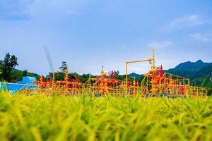 BP rút khỏi lĩnh vực khí đá phiến ở Trung Quốc