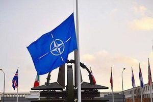 Lý do Nga ngừng mọi hoạt động hợp tác với NATO