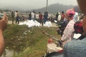 Phát hiện 1 tấn chất 'lạ' vô chủ nghi ma túy ở Nghệ An