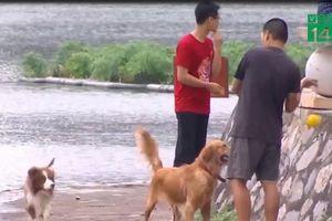 Hà Nội: Vô tư huấn luyện chó dữ tại công viên