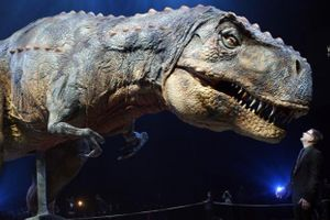 Tìm thấy hóa thạch khủng long 220 triệu năm tuổi ở Argentina