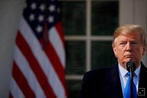 Lời tiên tri của ông Trump về bầu cử Tổng thống Mỹ 2020