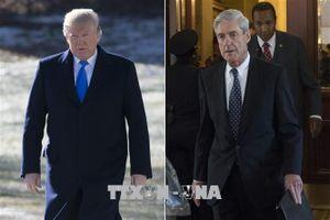 Bộ Tư pháp Mỹ công bố báo cáo kết quả điều tra của ông Robert Mueller