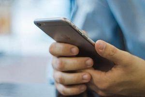 Triển khai dịch vụ tra cứu tham gia bảo hiểm xã hội qua tin nhắn