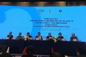 Tạo lập khung khổ pháp lý và chính sách thuận lợi để thúc đẩy phát triển bền vững khu vực Hợp tác xã trong thế kỷ 21