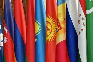 Ukraine nêu lý do rút khỏi thỏa thuận về tiêu chuẩn vũ khí với SNG