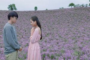 Chiếu miễn phí hàng loạt phim Việt dịp lễ 30-4, 1-5