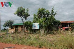 Đắk Lắk cưỡng chế thu hồi 1.000ha đất rừng bị lấn chiếm