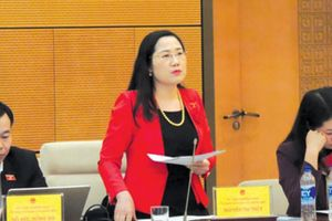 Đề nghị Bộ Công an giải trình việc xử lý vụ Nguyễn Hữu Linh dâm ô
