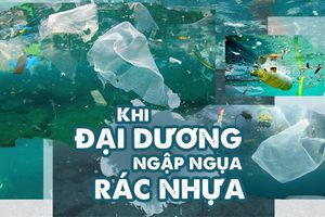 Khi đại dương ngập ngụa rác nhựa