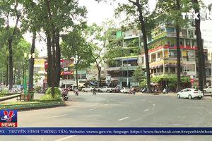 TP HCM 'khát' cây xanh