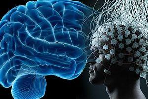 Bộ não con người có thể kết nối được với Internet