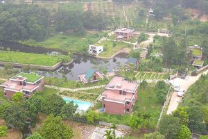 Gần 20 hộ dân Sóc Sơn khiếu nại khẩn cấp kết luận thanh tra đất rừng