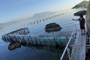 Diễn biến vụ giang hồ vô cớ đập phá tan hoang cơ sở du lịch: Công an TP Cam Ranh vào cuộc
