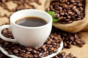 Giá cà phê hôm nay 20/4: Giữ nguyên giá, dao động từ 30.600 - 31.500