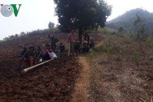 Nắng nóng gay gắt, hàng chục hecta rừng phòng hộ ở Sơn La bị thiêu rụi