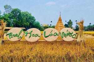 Lễ hội tôn vinh lúa nước tại quê hương cố Thủ tướng Phạm Văn Đồng
