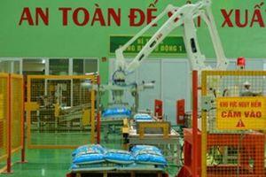 Vĩnh Phúc: Khánh thành nhà máy phân bón hữu cơ 500 tỷ đồng