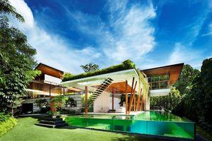 Ngôi nhà xanh mướt với vườn trên mái